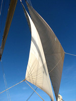 Blue sky and sails